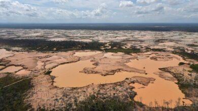 Minería ilegal en el Perú. Foto. Nepszava