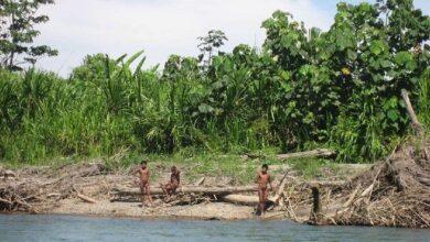 Comunidad indígena de Purús