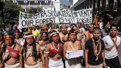 Mujer waorani de Ecuador fue premiada por defender su territorio y su selva